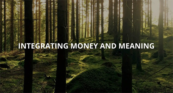 """Just What Do We Mean by """"Integrating Money and Meaning""""?"""